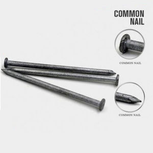 Factory Supply Factory Price of Q195 Common Nail pictures & photos