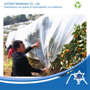 PP Nonwoven Cover for Tree and Fruit pictures & photos