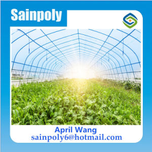 Low Cost Plastic Film Agricultural Light Deprivation Greenhouse pictures & photos