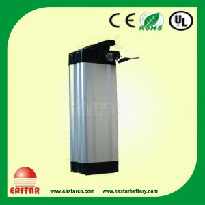 Electric Bike Battery Lithium LiFePO4 with BMS pictures & photos