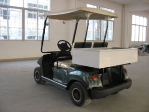 Cheap 2 Seaters Electric Cart with Cargo Box pictures & photos