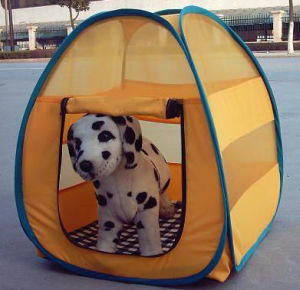 Dog House Pet Tent Pet House pictures & photos