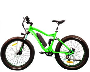 Rear Drive Big Power Fat Mountain Electric Bicycle pictures & photos
