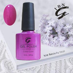 Salon Quality UV LED Nail Gel Polish pictures & photos