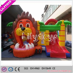 Inflatable Bouncy Castle with Slide and Bouncer pictures & photos