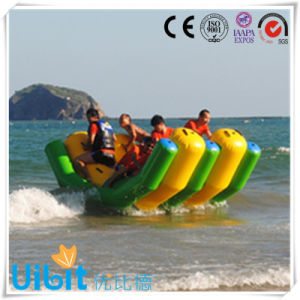 High Quality PVC Inflatable Water Park Equipment (Double Rocker)