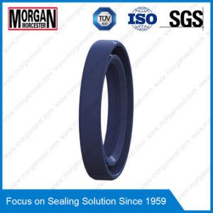 OEM/ODM Custom Rubber Ring as/Tc Type Oil Seal pictures & photos