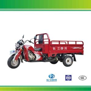Wholesale Three Wheel Gas Motor Tricycle with Competitive Price
