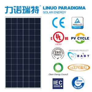 300W Poly Solar PV Module (310-325W) pictures & photos