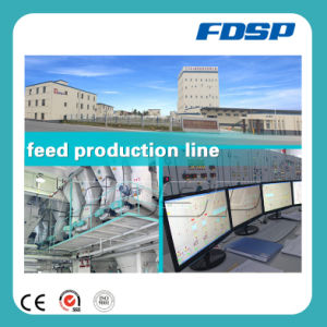 Stable Operation 5-7tph Feed Pellet Production Line with Poultry Equipment pictures & photos