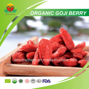 Manufacturer Supplier Organic Goji Berry pictures & photos
