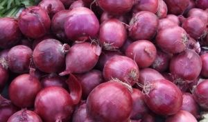 Export High Quality New Crop Red Onion 4-7cm pictures & photos