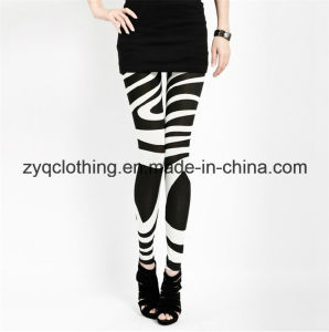 Fashion Sexy Leggings, Zebra Style Leggings with Mesh Yarn pictures & photos