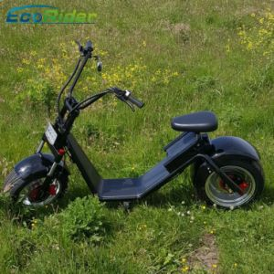 Ecorider 60V Two Wheel Electric Harley Scooter with Anti-Theft Equipment pictures & photos