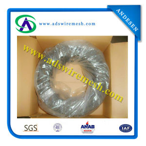 Black Annealed Iron Wire or Black Bindling Wire (best quality & factory price) pictures & photos