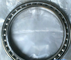 Made in China Bd130-2 Excavator Bearing pictures & photos