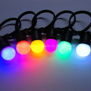 Outdoor G50 Bulb IP65 LED Belt Light for Christmas Decoration pictures & photos