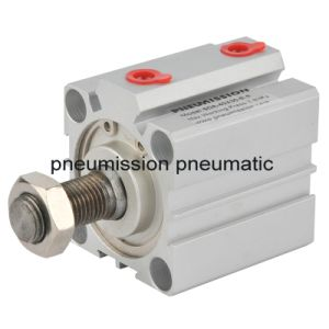 Pneumatic Compact Air Cylinder (SDA Compact Cylinders) pictures & photos