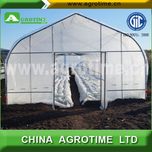 Vegetable and Flower Tunnel Greenhouse (CMS3810)