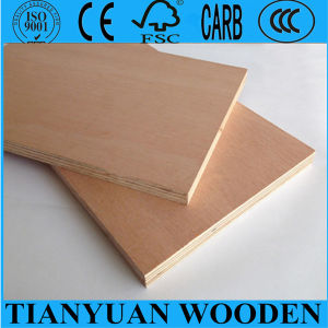 One or Two Times All Thickness Okoume/Pencil Cedar/Bintangor/Birch/Pine /Poplar Plywood pictures & photos