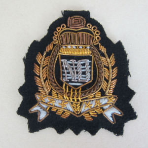 Custom Clothes/Garment Patch Embroidery Applique pictures & photos