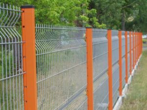 PVC Coated Welded Wire Mesh Fence for Protecting (Anjia-059) pictures & photos