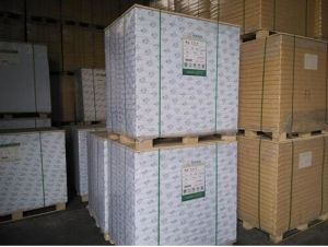 300GSM-400GSM C1s Fbb/Ivory Board pictures & photos