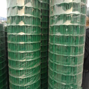 PVC Coated Holland Wire Mesh pictures & photos