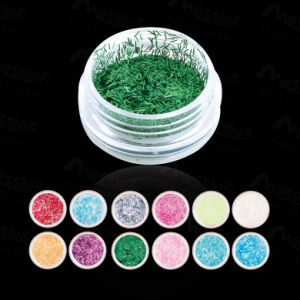 12 Color/Lot High Quality Nail Art Shiny Strip Dust Nail Art Kit Acrylic Set pictures & photos