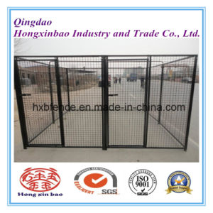 PVC Coated Welded Wire Mesh Outdoor Dog Kennel/Dog Cage pictures & photos