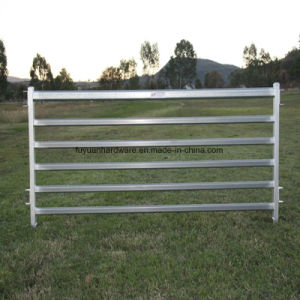2100 X 1800mm Heavy Duty Steel Tube Cattle Yard Panel pictures & photos