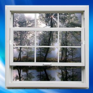 UPVC / Vinyl / PVC Single Hung Windows