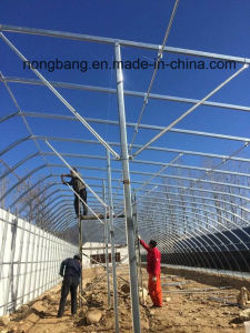 Multi Span Agricultural Greenhouse pictures & photos