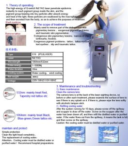 Q-Switched ND: YAG Tattoo Removal Laser pictures & photos