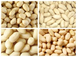 Blanched Peanut Kernels pictures & photos