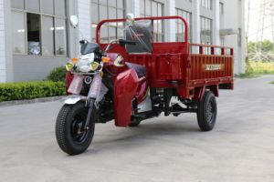 EEC Cargo Tricycle with Large Container Box pictures & photos