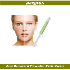 Natural Sponge Spicule Skin Renewal Face Cream Facial Paste for Acne Prevention 3G (OEM/ODM) pictures & photos