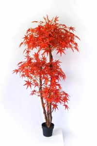 Artificial Plants and Flowers of USA Maple 180cm 700lvs pictures & photos