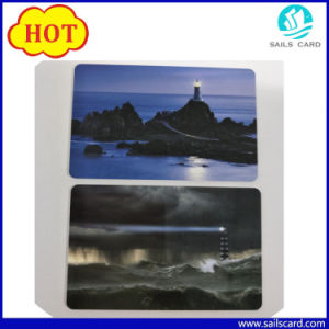 ISO15693 Icode Sli-S Smart Card pictures & photos