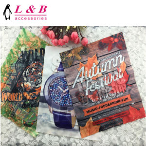 2018 Fashion Design Heat Tranfer Printing Patch for Clothes pictures & photos