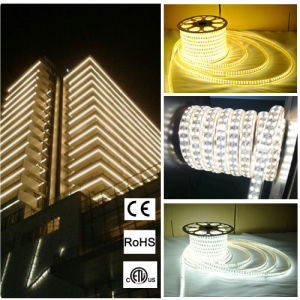 SMD5630 Outdoor Decoration LED Strip Light for Garden Decoration pictures & photos