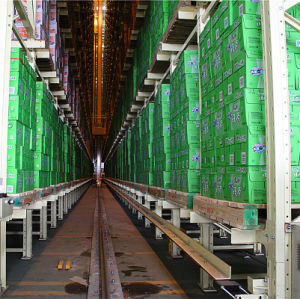 Automatic Pallet Rack for Industrial Warehouse Storage Solutions pictures & photos