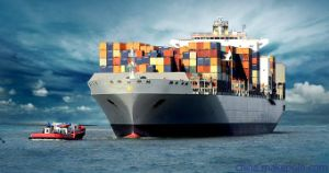 Sea Freight Shipping Service to Egypt pictures & photos