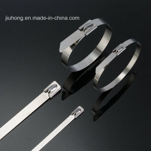 Stainless Steel Clamp pictures & photos