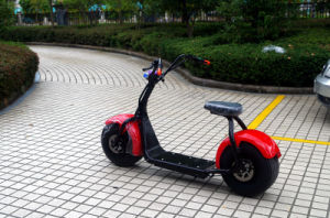 Hot Selling 2016 Jinyi Electric Scooter 800W Citycoco Scooter (JY-ES005) pictures & photos