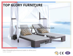 Outdoor Garden Rattan Leisure Lounger (TGLU-055) pictures & photos