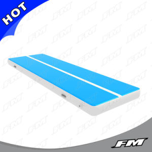 FM 2.8X8m High Quality Dwf Gym Mat Accepting Customized pictures & photos