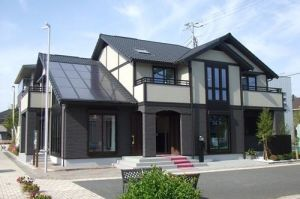 USA Style House with Garage Creative Steel Prefab House pictures & photos