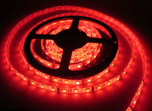 DC 12V/24V Ce Approved Flexible LED Strip Light Lamp pictures & photos