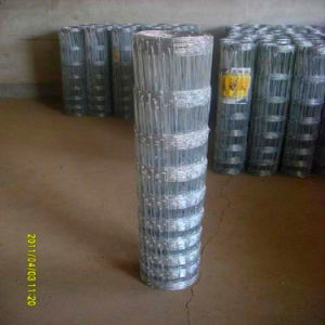 China Manufacturer Galvanised Hinge Joint Fencing for Farm pictures & photos